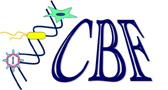Logo_CBF_25.jpg
